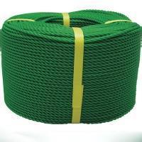 Plastic strapping rope