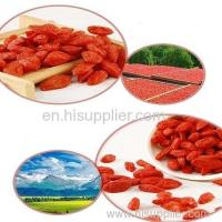 Dried Goji Berries Chinese Wolfberry
