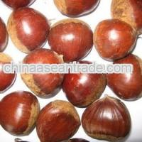 Buy cheap Agriculture fresh chestnut product