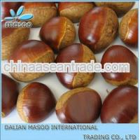 Buy cheap Agriculture 2012 Chinese Fresh Chestnut Price(raw and bulk) product