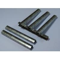 China STCR-5019 Chisel Point Industrial Staple on sale