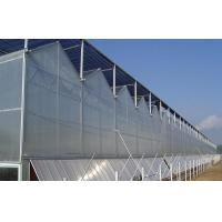 Venlo Type Polycarbonate sheet Greenhouse