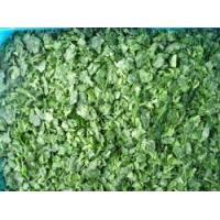 Buy cheap Frozen Spinach product