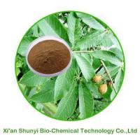 Buy cheap Horse Chestnut Extract|Horse Chestnut Extract Powder product