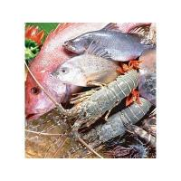 Buy cheap Seafood dryer product