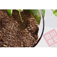 Organic fertilizer Tea Seed Meal With Straw