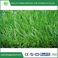 Buy cheap Best Turf for Backyard product