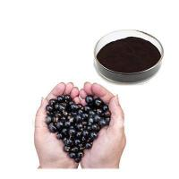 Buy cheap black current extract product