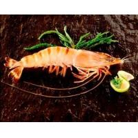 Buy cheap Black Tiger Shrimps Head-on/Shell-on product