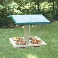 Buy cheap Forest Friend Hanging Treat Feeder product