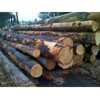 Buy cheap >>wood product