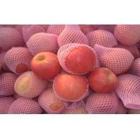 Buy cheap Good Look Fresh Red Fuji Apple Nutritional Value For Health , No Fleck product