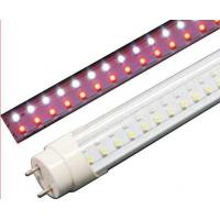 Meat Counter LED T8 Tube-AMW-T/MNF196-81409-AT