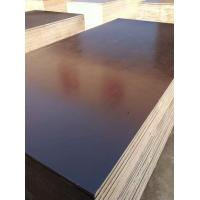 Buy cheap Finger Jointed core Film faced plywood product