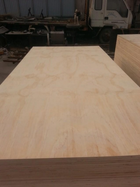 Quality Radiata Pine plywood for sale