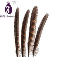 Buy cheap chicken feather trims,pheasant feather ribbons/fringes for cloth accesory product