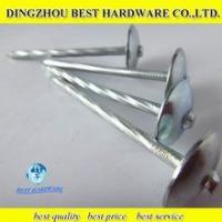 Flat Roofing Nail Quality Flat Roofing Nail For Sale
