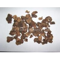 Buy cheap Mushroom NAME: Dried Tuber Melanosporum product