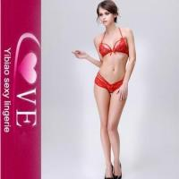Buy cheap Push Up Women Sexy Lingerie Bar Panty Set See Through Lace Sexy Bra Set product