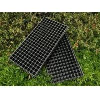 Buy cheap 200 black plastic nursery seed plant tray product