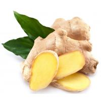 Buy cheap Natural Essential Oil 【Product Name】Ginger Essential Oil product