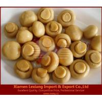 canned edible fungus Product name:canned mushroom whole in brine