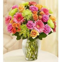 Buy cheap Vibrant Blooms Bouquet product