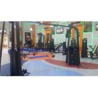 Buy cheap New Design Adjustable Crossover Lifetime Fitness Machines(RPN-016) product