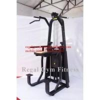 Shandong Professional Commercial Fitness Equipment Dip Chin Assist