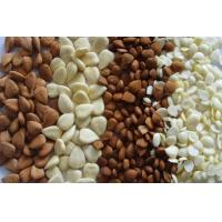 Buy cheap Almond/Apricot Kernels product