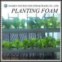 Buy cheap Florist Foam Blocks/Soilless Culture Foam For Greenhouse product