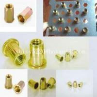 Buy cheap small Head Threaded Insert Nuts hex head rivet nut product