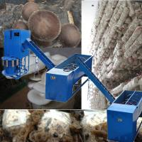 Buy cheap shiitake mushroom production line product