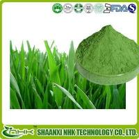 Buy cheap Organic Barley Grass Powder, Organic Young Barley Grass Juice Powder product