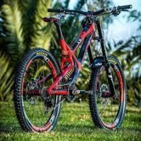 Buy cheap Carbon fiber mountain bike from wholesalers